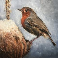 Oil study of Robin on Coconut Feeder in Winter