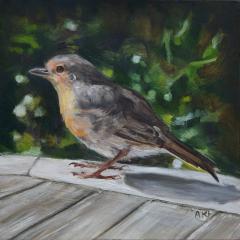 Oil study of Summer Robin