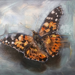 painted-lady-300dpi-1